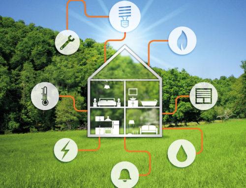 Una vita per il green. Piccoli consigli di sostenibilità.